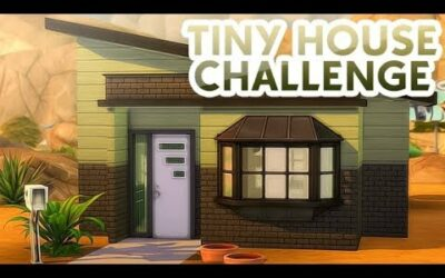 I TRIED THE IMPOSSIBLE TINY HOUSE CHALLENGE ??