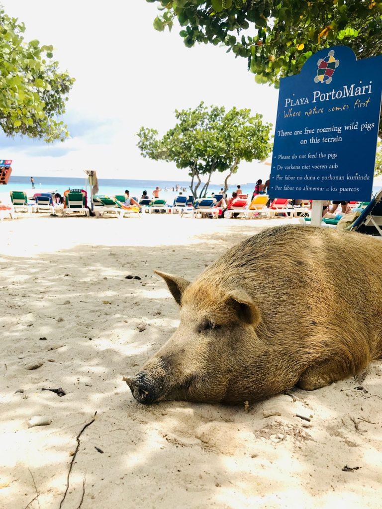 strand porto marie