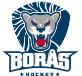 BorasHockey_Logo_Pantone_POS_RGB-1.png