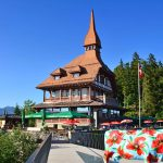 harder kulm restaurant and cow above Interlaken