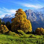Grindelwald in autumn