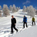 Snowshoeing through winters' paradise near Interlaken