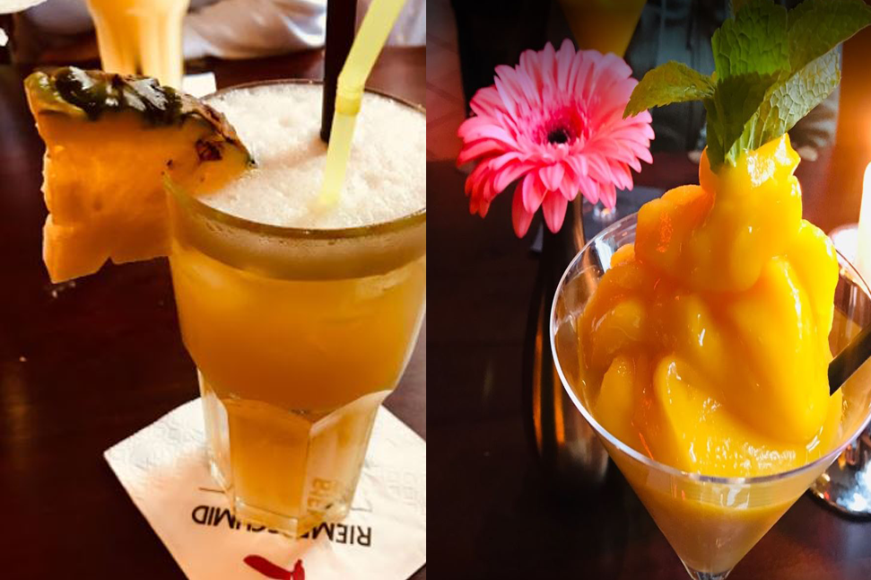 kaktus drinks4