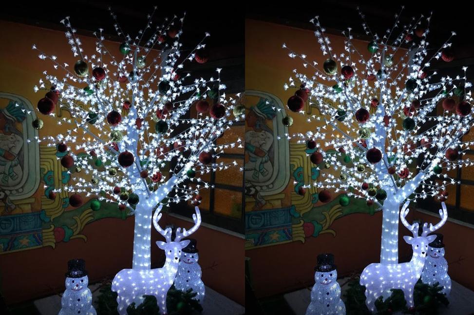 kaktus_christmas1