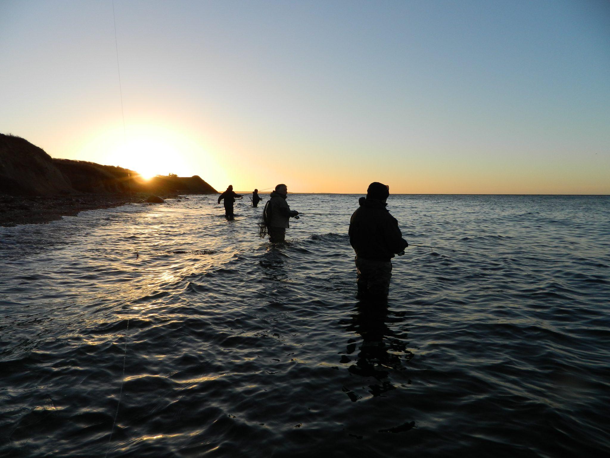 Oplev det spændende aftenfiskeri i Kalundborg Fjord