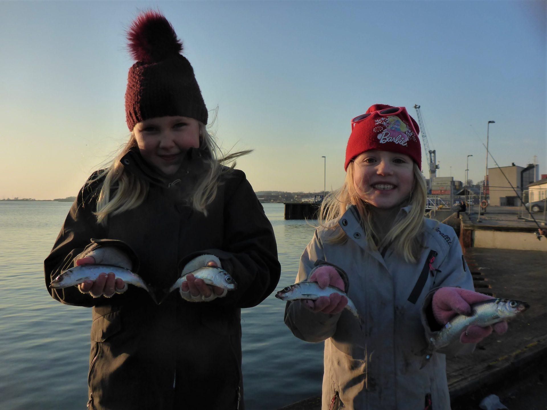Sildefiskeri i Kalundborg Havn er for alle.