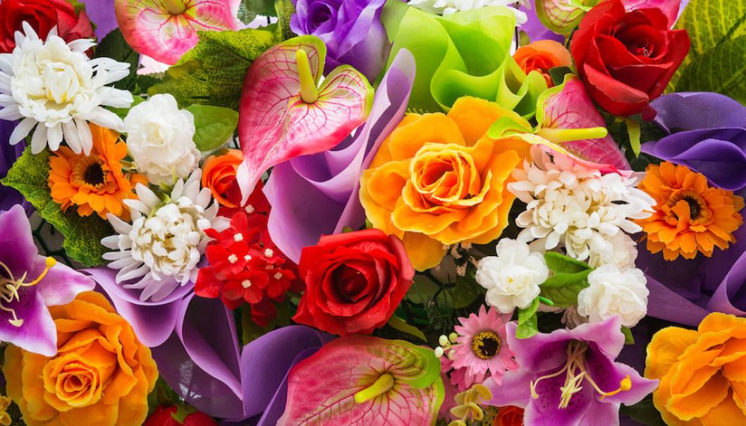 Blommor till Calle och Mats!
