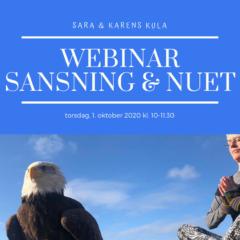 Webinar – 5. Sansning & Nuet 1. Okt 2020