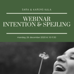 Webinar – 8. Spejling & Intention 28. dec 2020