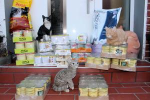 Futterpakete verschiedener Sorten auf Haustürstufen, dekoriert mit drei Katzenfiguren
