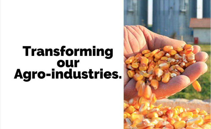 Kayode Adaramodu on Ekiti's Agro Industries