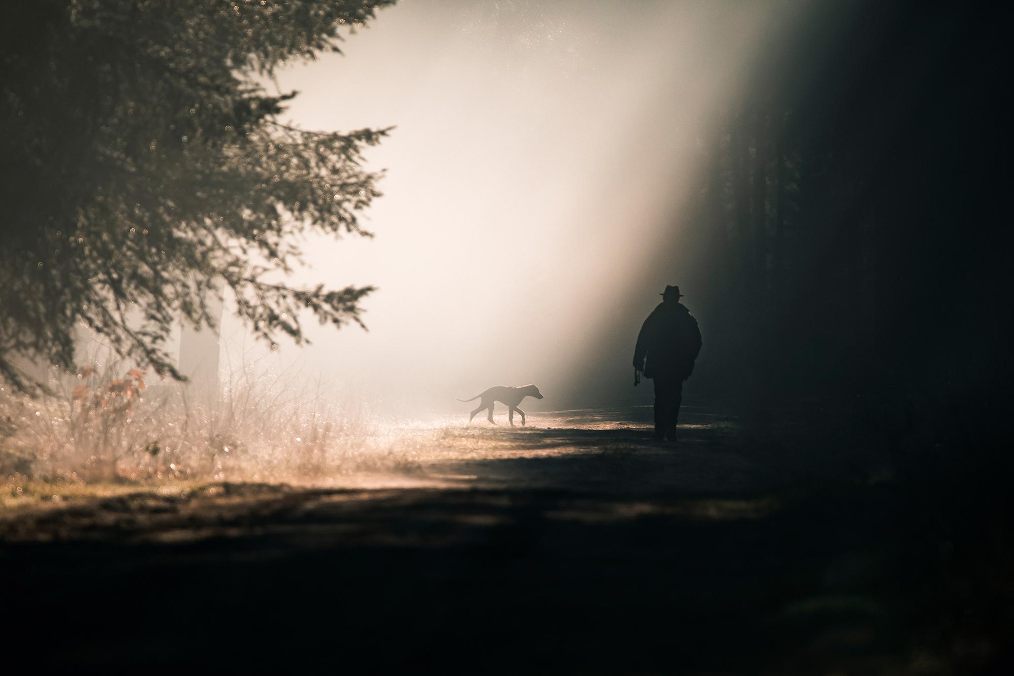 Kelly_Noten_Tom_Thiemann_Mystical_Forest_1