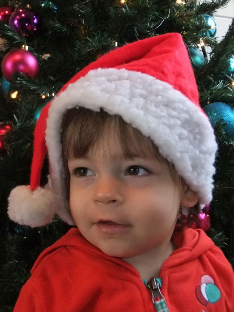 Freude auf Weihnachten - Fotogalerie