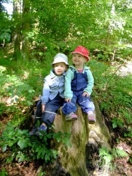 Naturerlebnis Kid Zone Kinderbetreuung 4a 263x351 - Kita Kid Zone Kinderbetreuung für 0-3 Jahre in Jersbek
