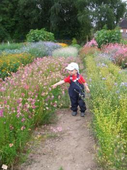 Naturerlebnisse 263x351 - Kita Kid Zone Kinderbetreuung für 0-3 Jahre in Jersbek