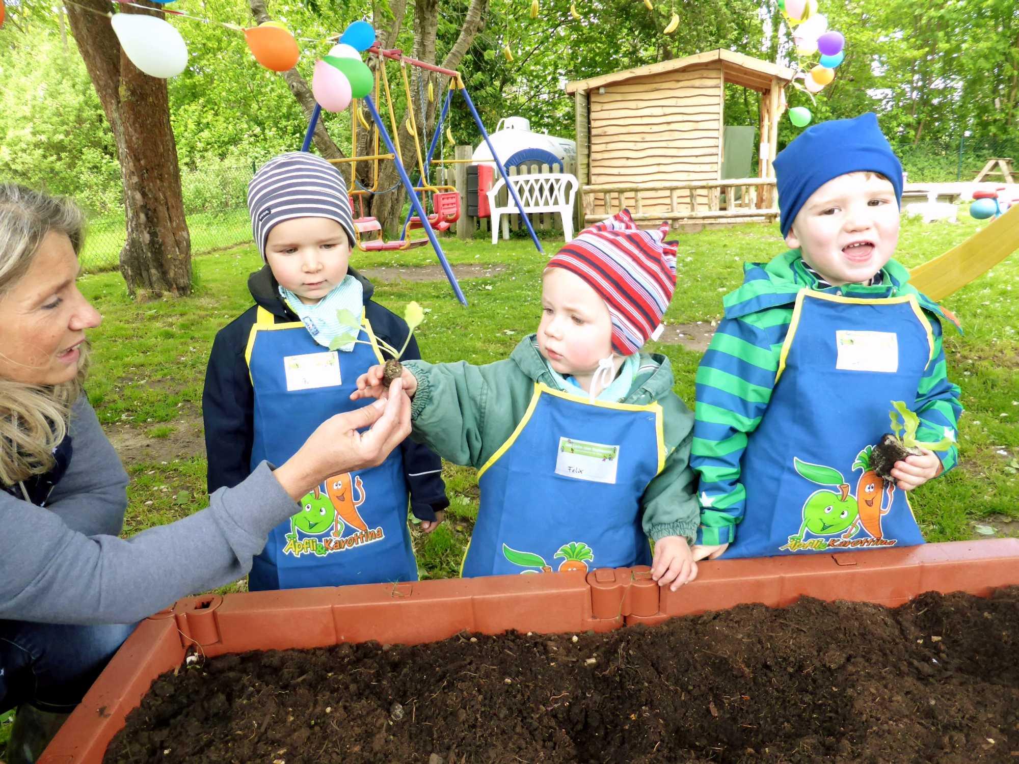 Gemüsebeet Kid Zone Kinderbetreuung 4 - Kita Kid Zone Kinderbetreuung für 0-3 Jahre in Jersbek