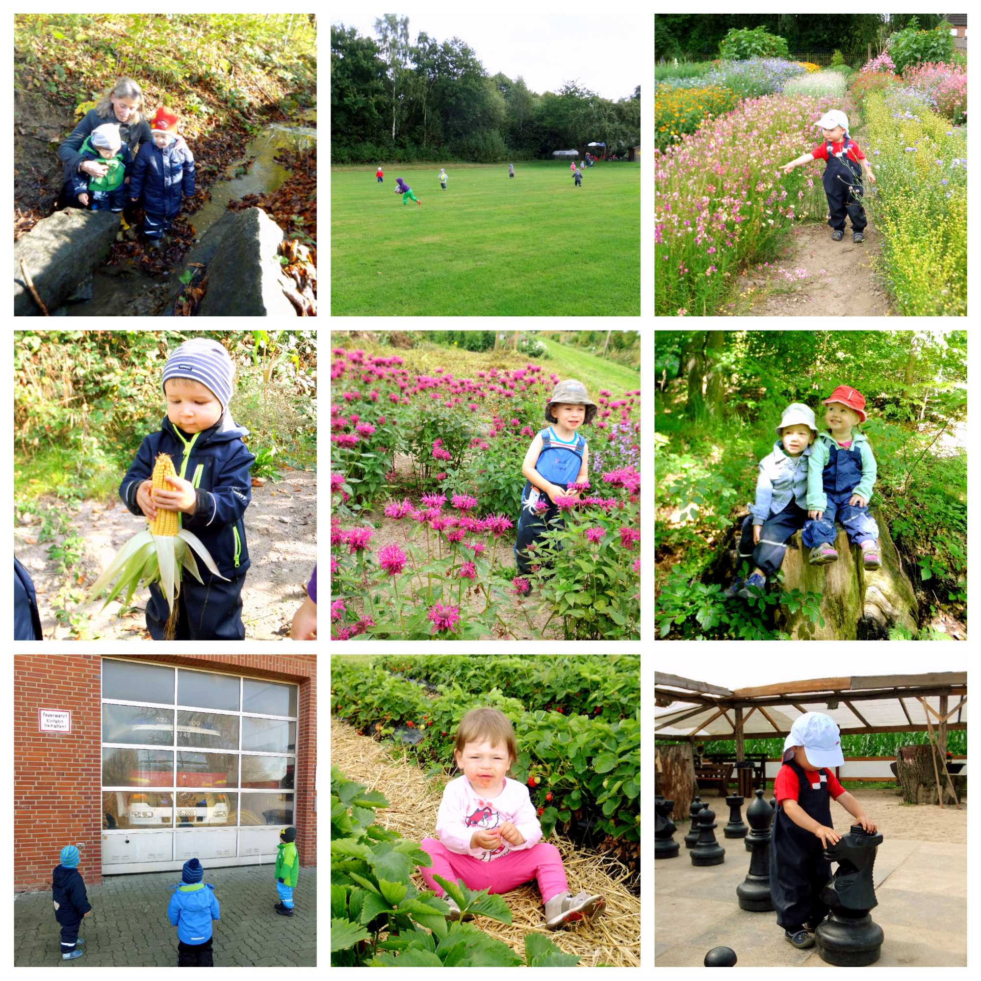 Kita Kid Zone Naturerlebnisse 1 - Naturerlebnisse und Ausflüge