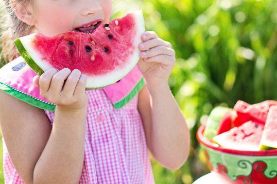 Kita Kid Zone gesunde Ernährung 538x359 - Gesunde Ernährung