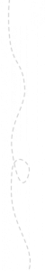 RADARstippellijn_2000x200-1-1536x154
