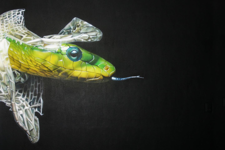 Muurschildering vervellende slang in de tienerkamer