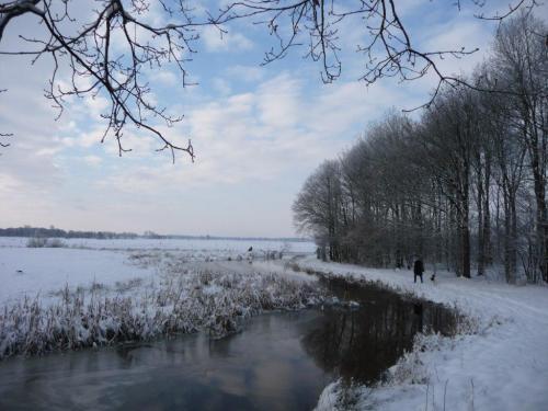 2010kiwanis wandeling en winter 024
