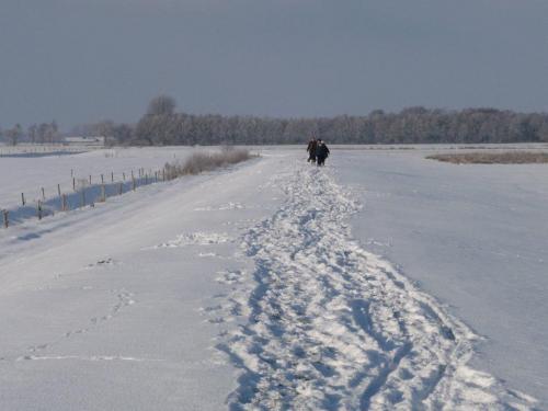2010kiwanis wandeling en winter 034