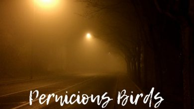Photo of Pernicious Birds – Sounds From Nowhere