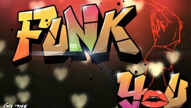 Photo of עמרי נובל והאצילים – Funk You