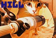 Photo of Sloppy Hill releases energetic altrock tune 'Corey Sun'