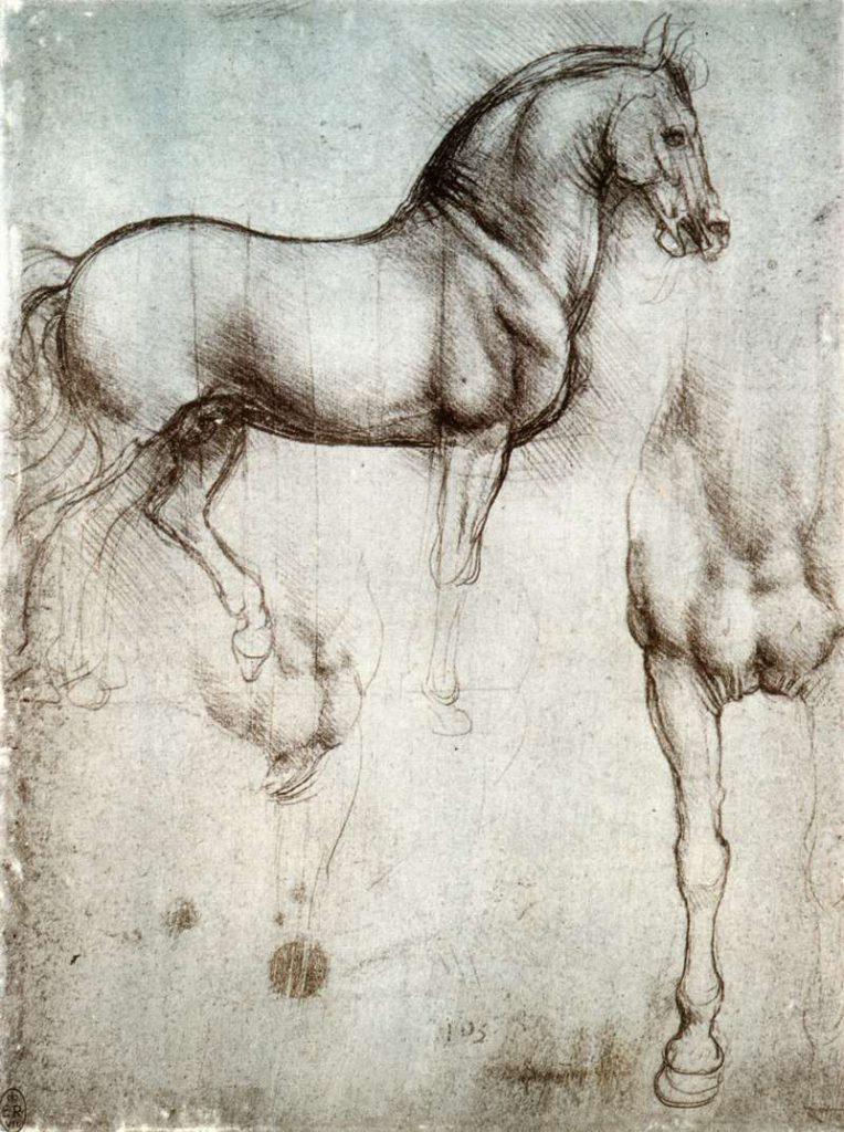 Leonardo da Vinci studie van paard