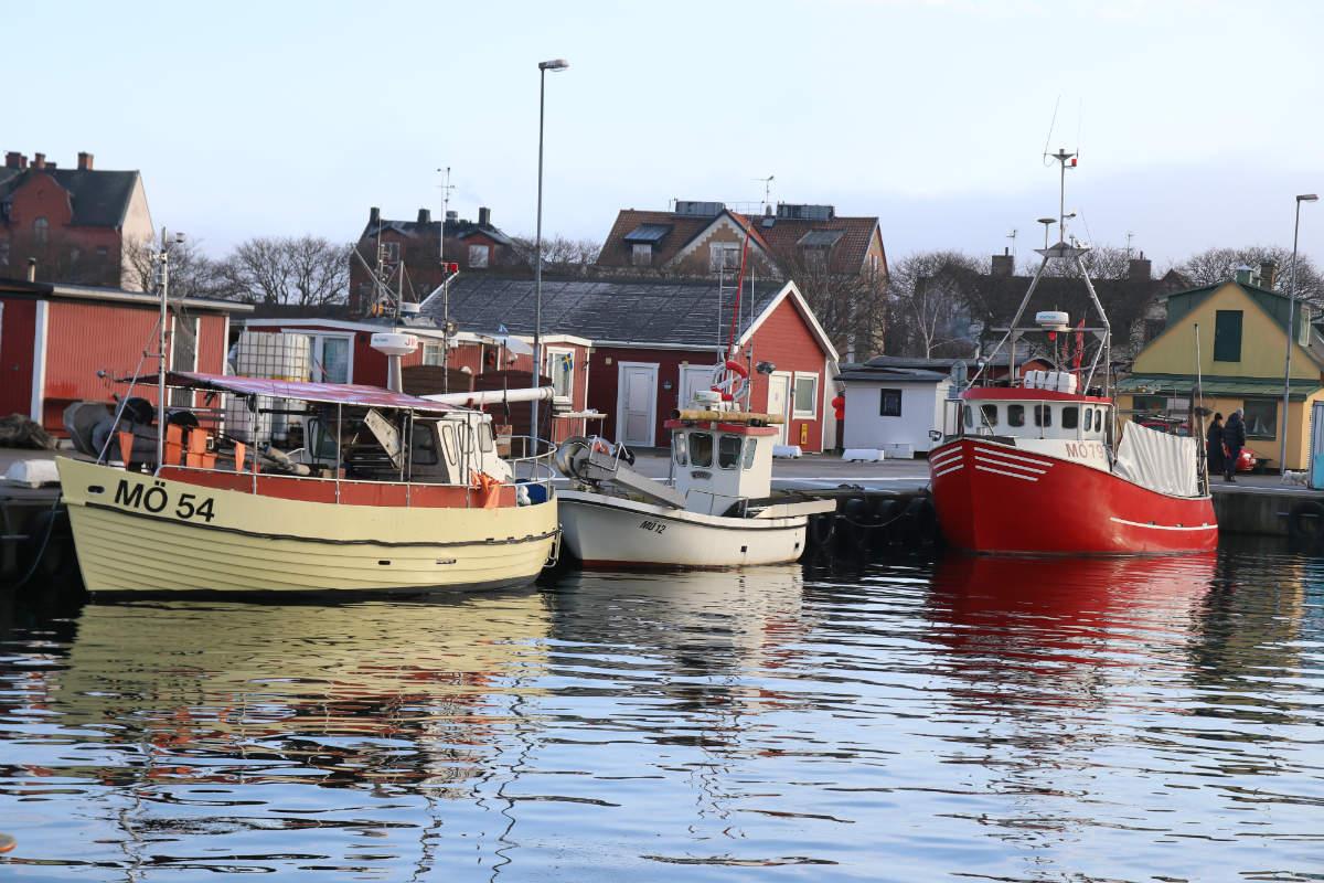 Malmö Limhamn Limhamns fiskehamn Kokkolit Öresundsfisk-från båt till bord