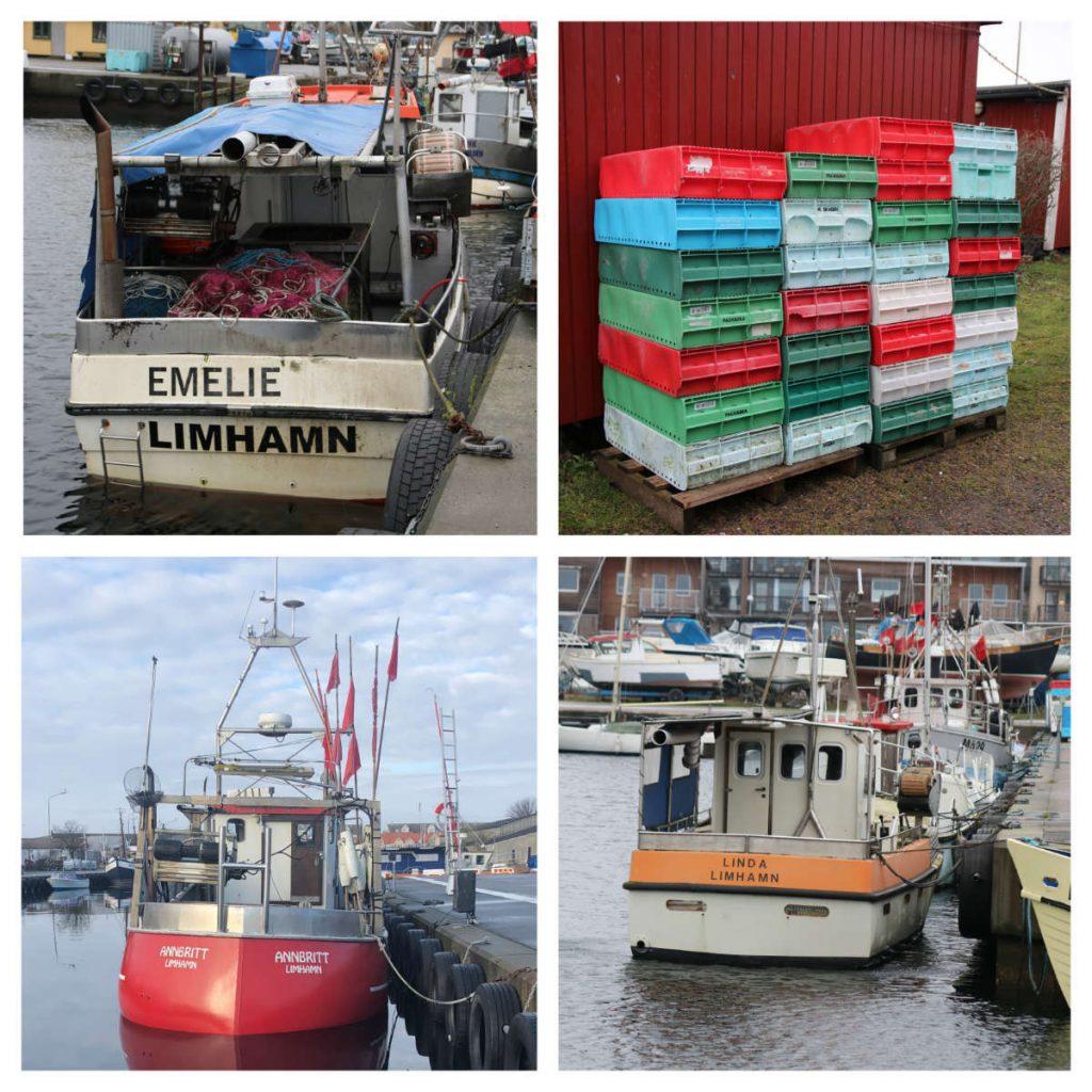 Malmö Limhamn Limhamns fiskehamn Kokkolit fiskebåtar sälar i Öresund Öresundsfisk-från båt till bord