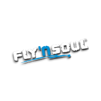 flynsoul-ks-Referenz