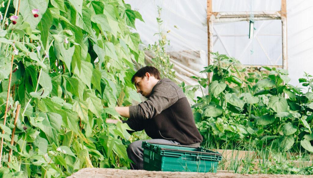 man-wearing-black-jacket-inside-the-greenhouse-1084542