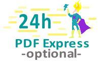 Meilensteintafel Download 24 Stunden Express 2