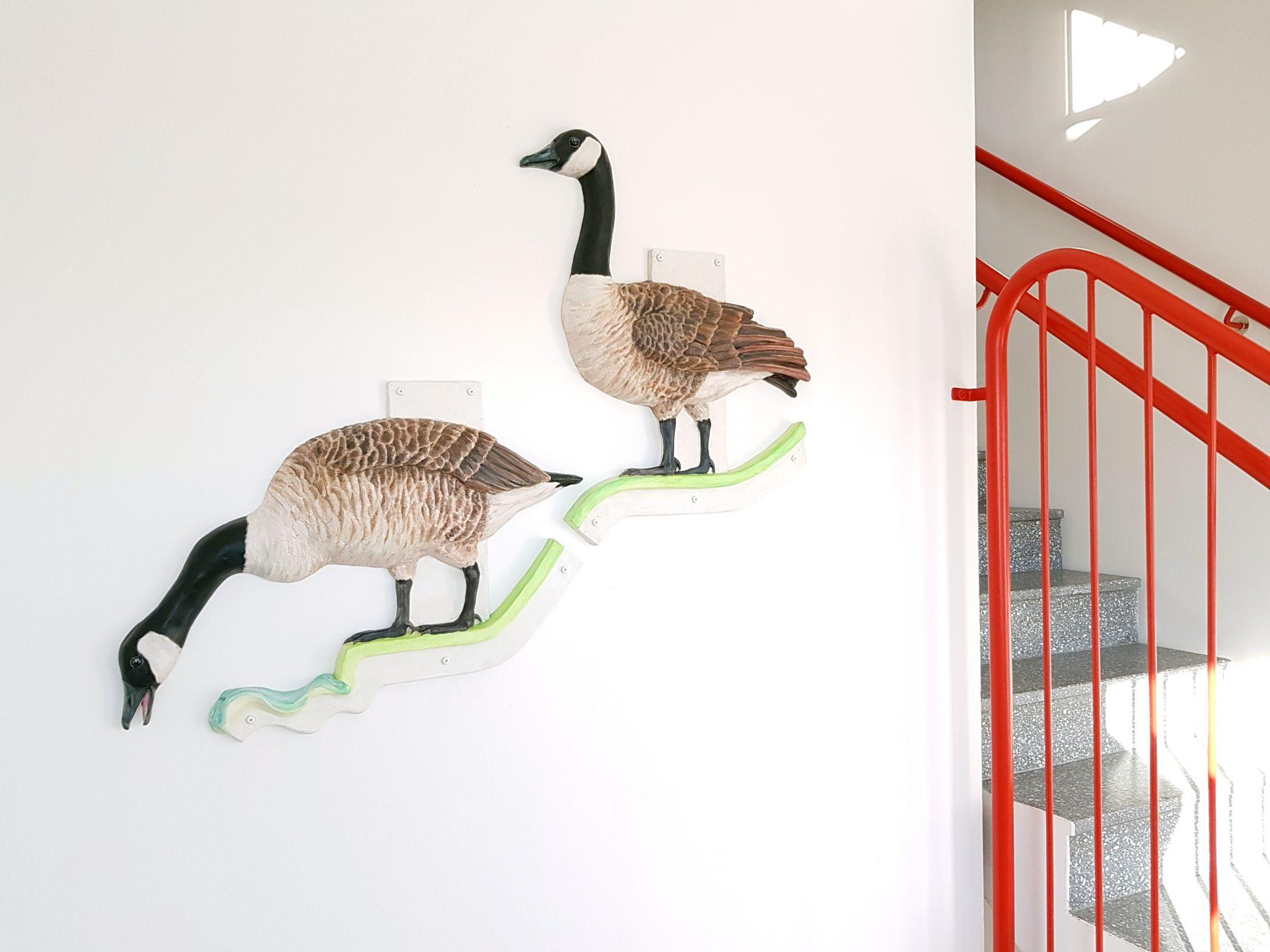Vån-2 Kanadagäss Fåglar och färger Kristina Nilsdotter 2019