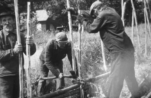 Axel Nilsson Höganäs, Ingvar Karlsson Rosenholm och Josef Axelsson hägnar gärdsgård