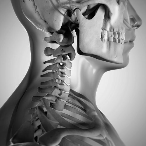 Ledfrigørelse af nakken
