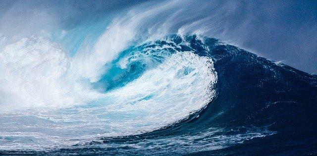 Das Ocean Protocol