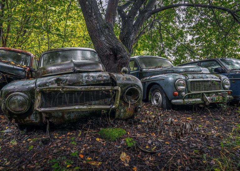 Volvo's Paradise