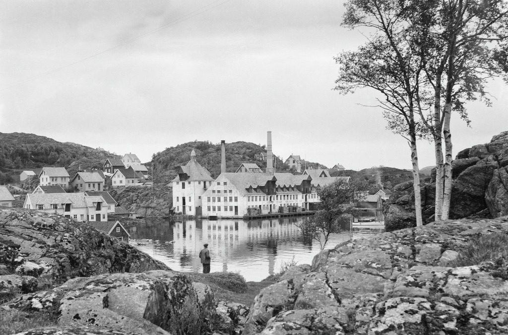 Bilde fra Universitetsbiblioteket i Bergen