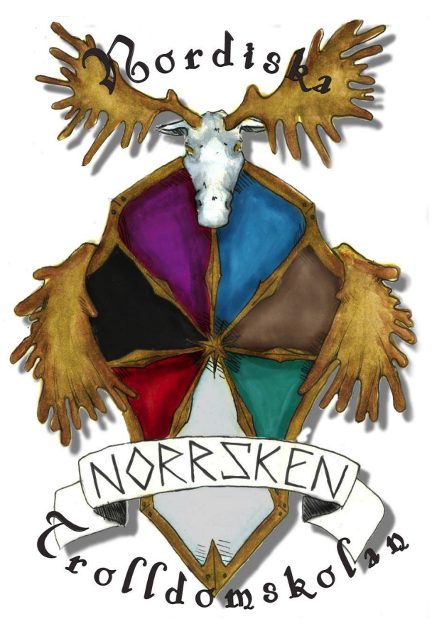 """Lajvläger """"Norrsken 27-28 november 2021"""""""