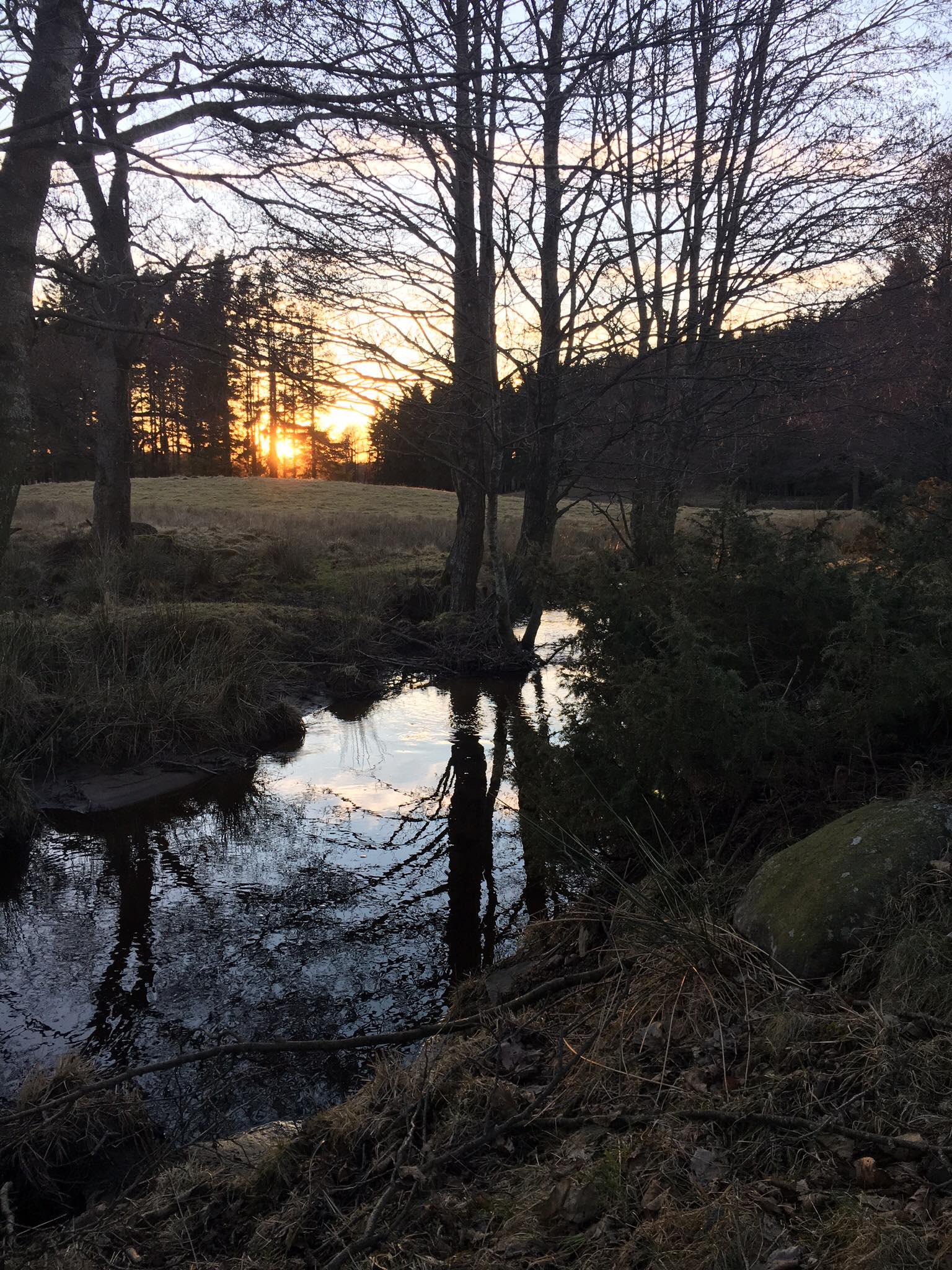 solnedgång senhöst