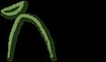 cenote-finalAsset 3instagram post