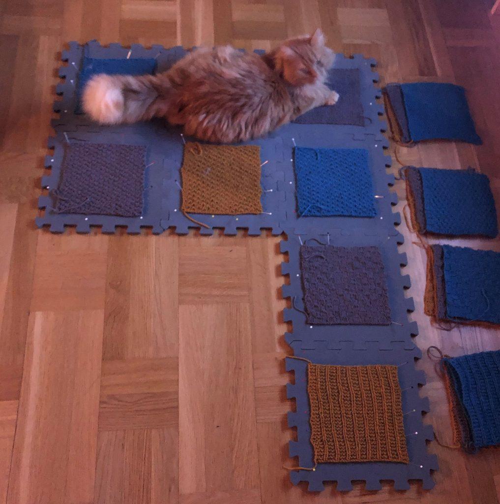 8 stickade rutor är uppnålade på ett golvpussel, Leo-katt ligger på två av rutorna.