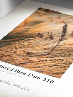 Detail_Photo_Matt_Fibre_Duo_210-1-1