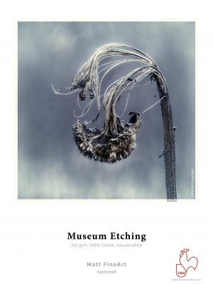 RS733_Museum_Etching-hpr