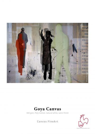 hahnemuehle__goya_canvas