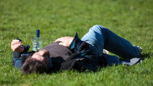 Alkohols virkning