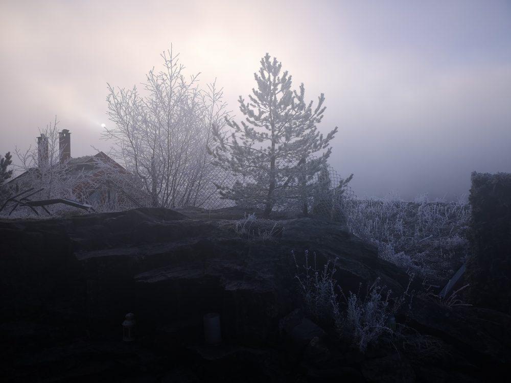lappeteppet-tåke-frost-rim